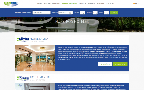 Web design and programming for hotel chain
